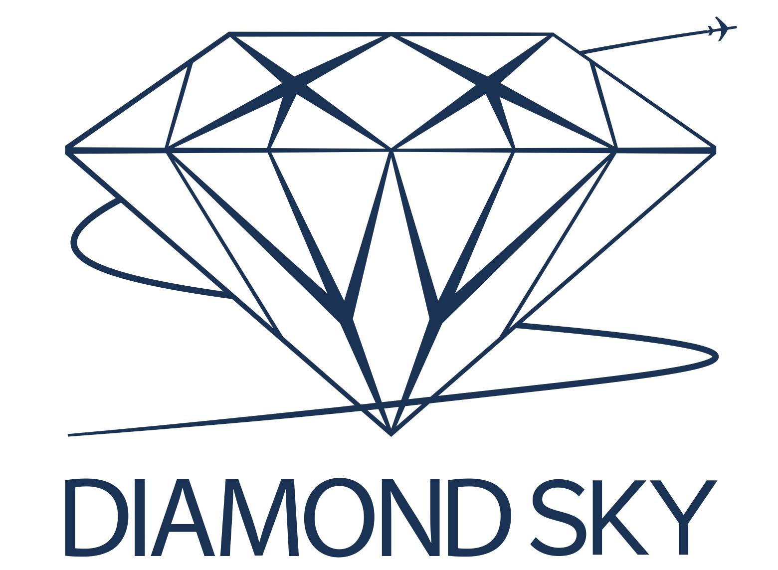 DMS_DiamondSky_Logo